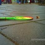 pict0017dec-2012k_paulienvanderbel